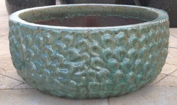 Daisy Water Bowl Celadon ST211559