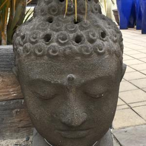 Buddha Head Brown FT221