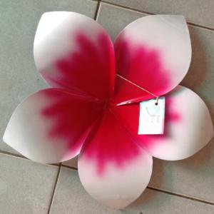 Frangipani Single Pink/Red IR628