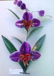 IR599 Purple Orchid